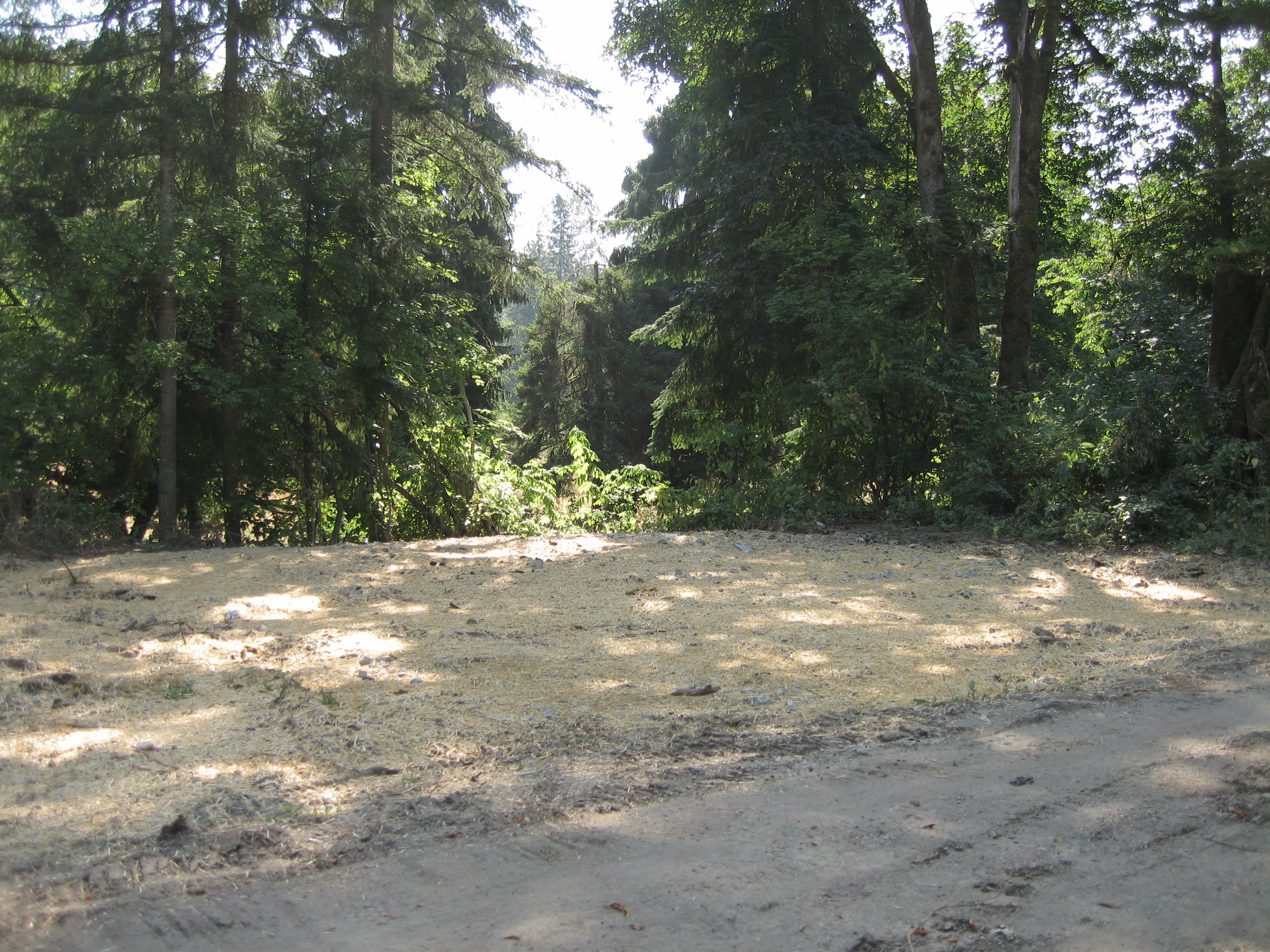 Puyallup River Levee Setback - Wildlife Recreation and Coalition